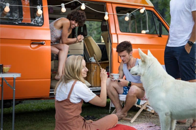 Dog and people sitting around a van.